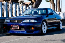 Nissan Skyline GTR R33 V spec for sale (N.8215)